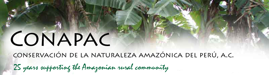 CONAPAC 20 years supporting the Amazonian rural community
